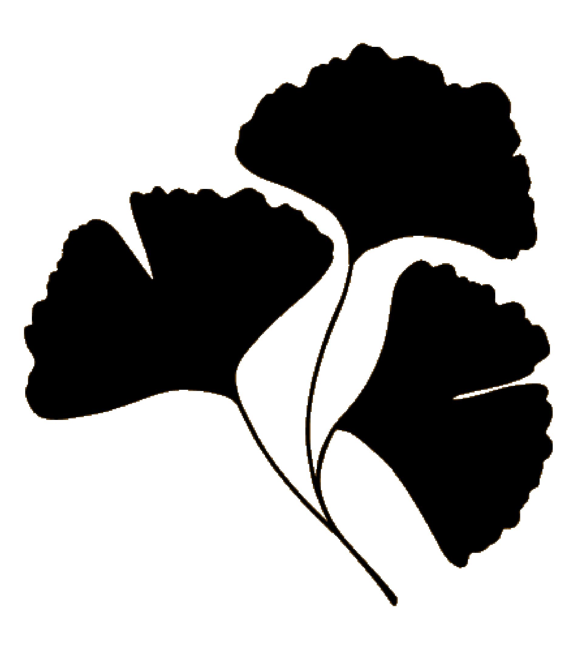 gingko flor negra-04